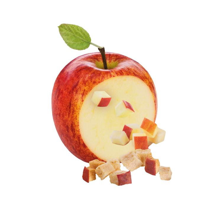 Cubes de pomme séchés