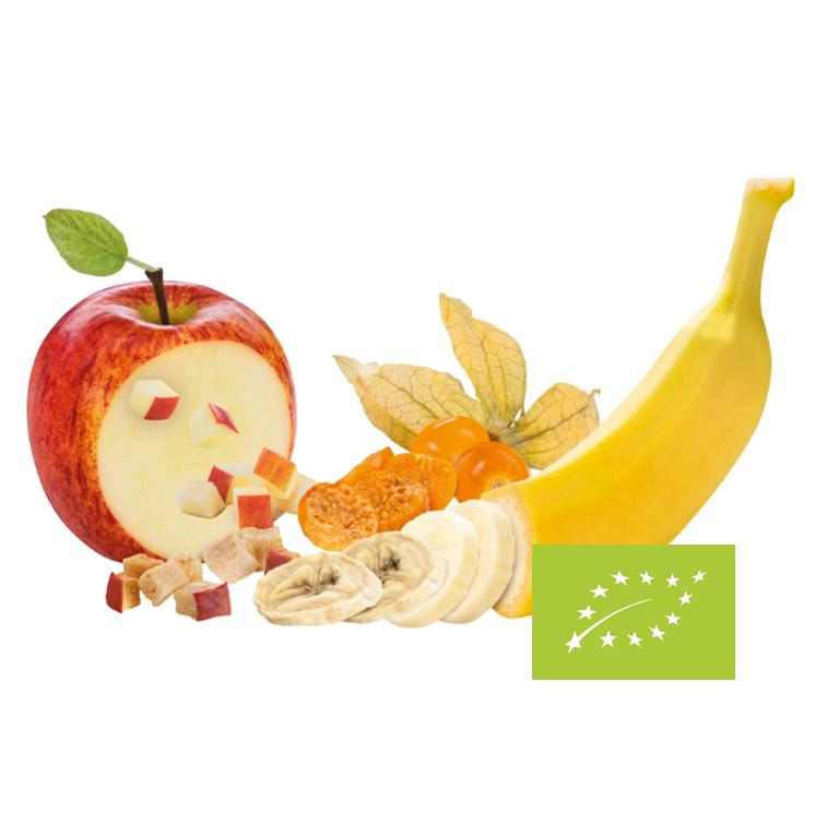 Mélange de fruits séchés BIO ( pomme, banana et physalis)