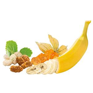 Mélange de fruits séchés II (banane, mûre et physalis)