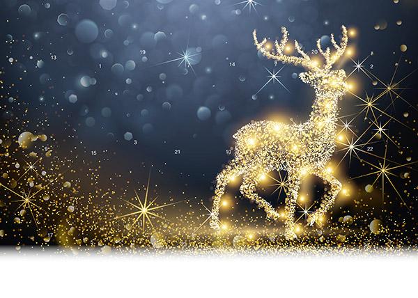Shin Reindeer M072